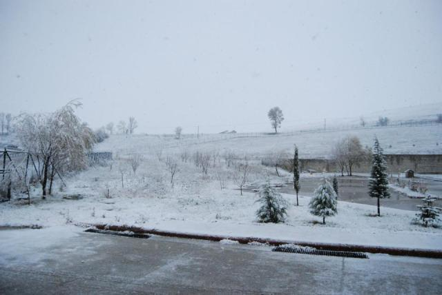 Havza'da Kar Yağışı Başladı galerisi resim 2