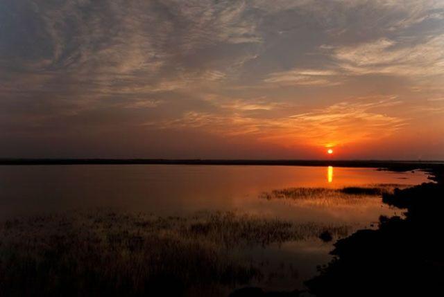 Samsun Kızılırmak Deltası galerisi resim 4