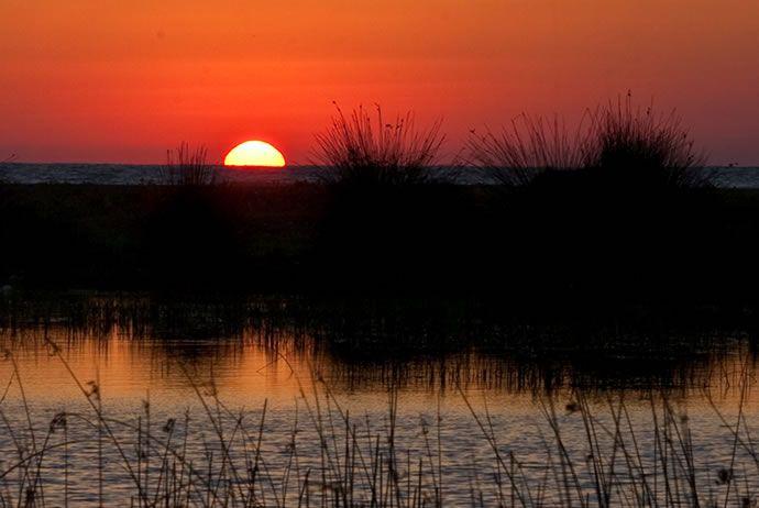 Samsun Kızılırmak Deltası galerisi resim 7