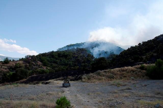 Çorum'da Orman Yangını galerisi resim 2
