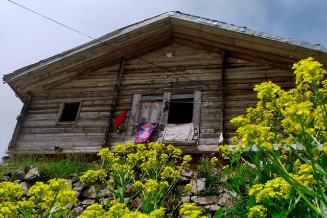 Karadeniz Yaylası; Soğanlı Dağları galerisi resim 13