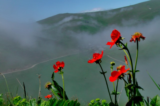 Karadeniz Yaylası; Soğanlı Dağları galerisi resim 4