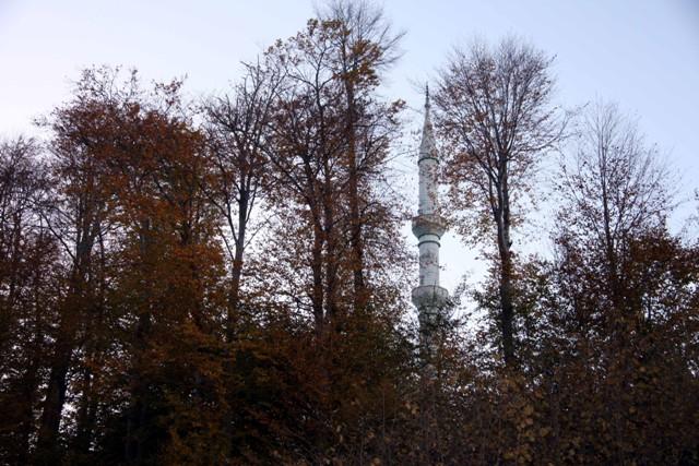 Karadeniz'de sonbahar galerisi resim 22
