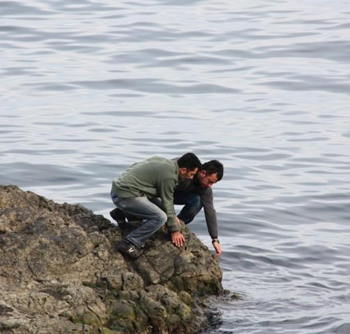 Denizdeki kayada define arıyor galerisi resim 3