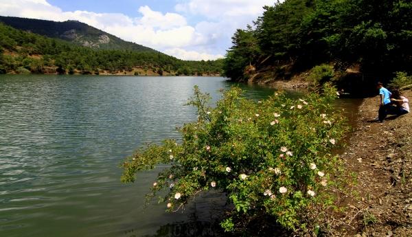 Boraboy Gölü tabiat parkı ilan edildi galerisi resim 2
