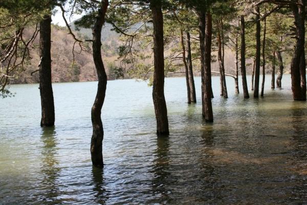Boraboy Gölü tabiat parkı ilan edildi galerisi resim 8