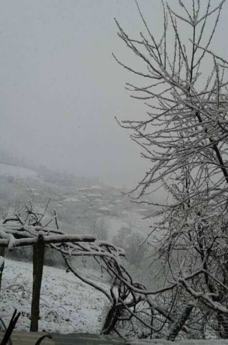 Nisan Ayi Samsun'a Kar Getirdi galerisi resim 1