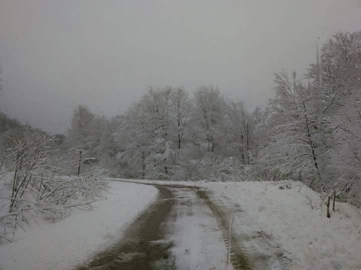 Nisan Ayi Samsun'a Kar Getirdi galerisi resim 19