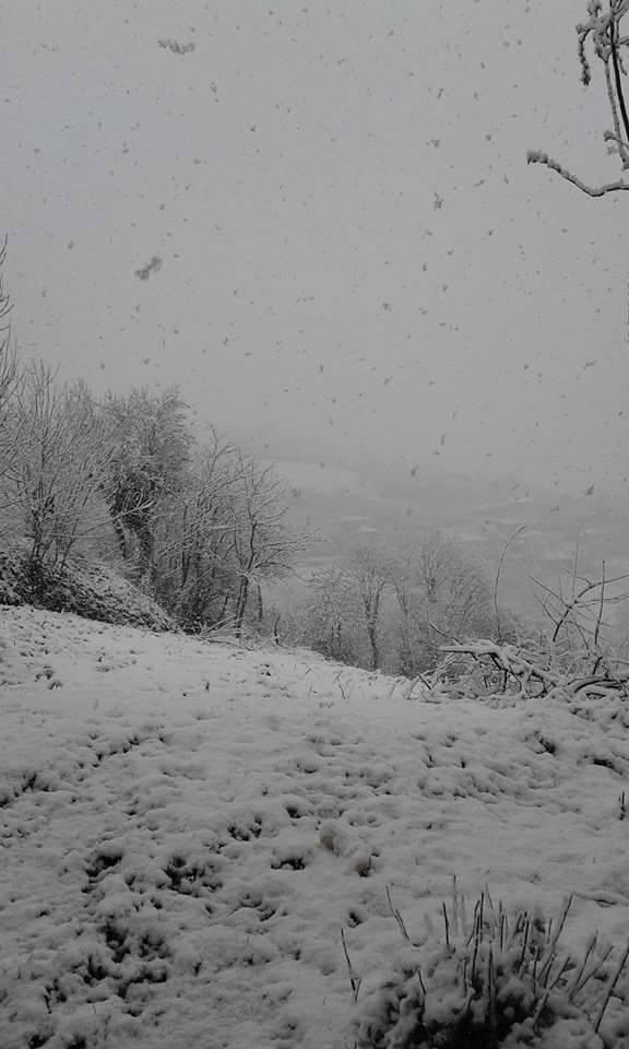 Nisan Ayi Samsun'a Kar Getirdi galerisi resim 2