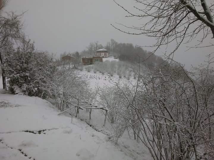 Nisan Ayi Samsun'a Kar Getirdi galerisi resim 8
