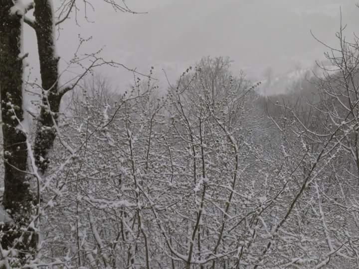 Nisan Ayi Samsun'a Kar Getirdi galerisi resim 9