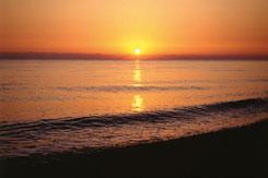 Deniz ve Samsun galerisi resim 1