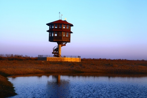 Kızılırmak deltası dünyaya açılacak galerisi resim 1