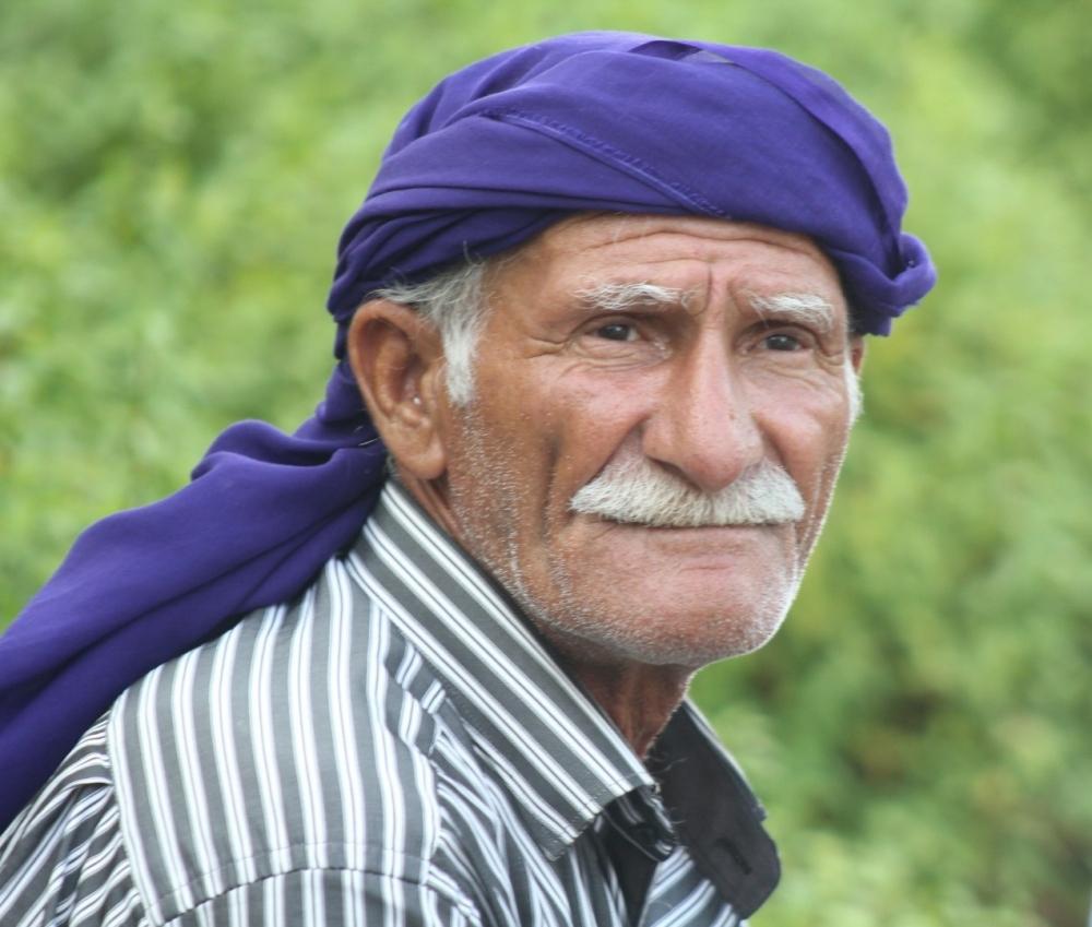 Samsun'daki Fındık İşçileri Neler Yaşıyor? galerisi resim 1