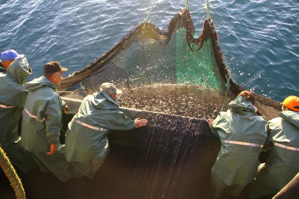 Samsunlu Balıkçılardan 'Vira Bismillah' galerisi resim 2