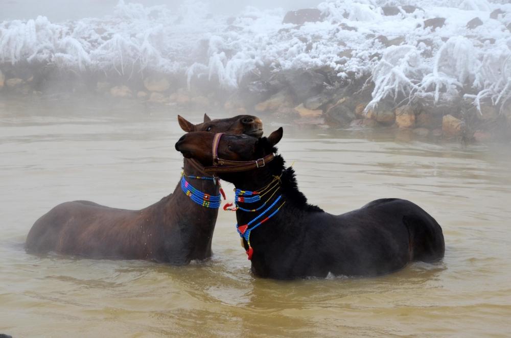 Manda ve Atlarını Kaplıca Sularında Yıkıyorlar galerisi resim 11