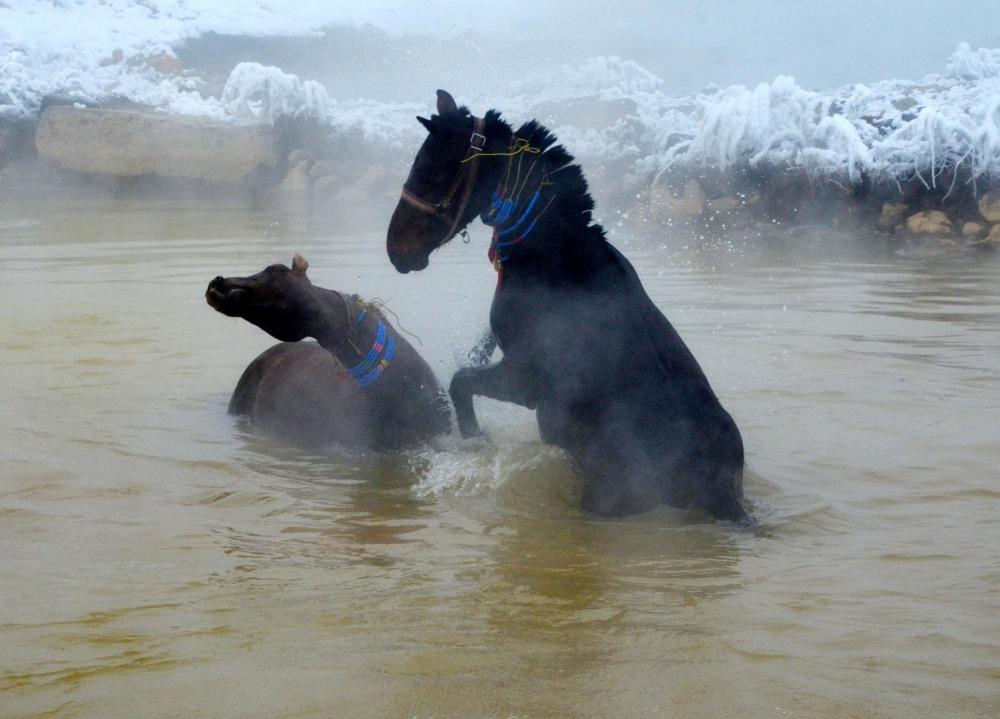 Manda ve Atlarını Kaplıca Sularında Yıkıyorlar galerisi resim 18