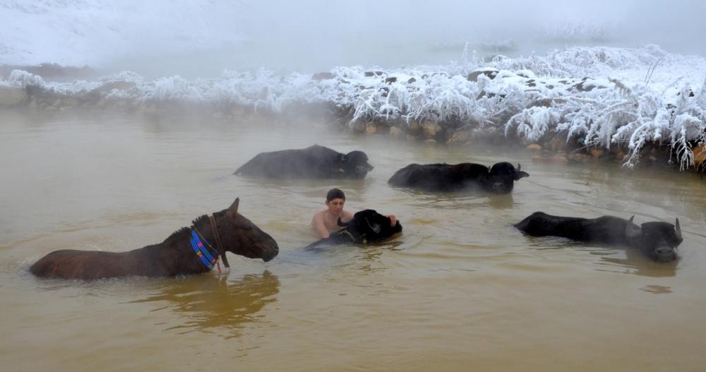 Manda ve Atlarını Kaplıca Sularında Yıkıyorlar galerisi resim 3