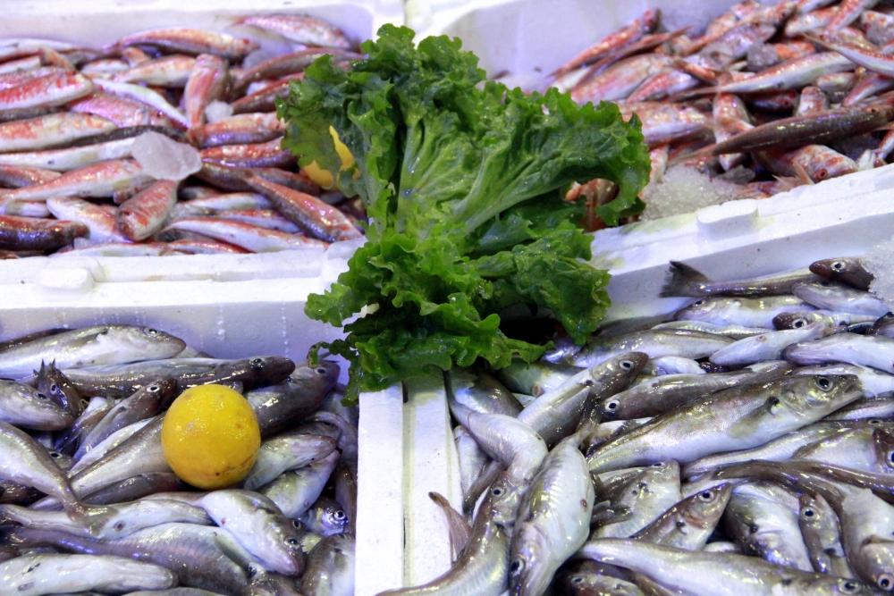 Kar Balık Fiyatlarını Artırdı galerisi resim 9