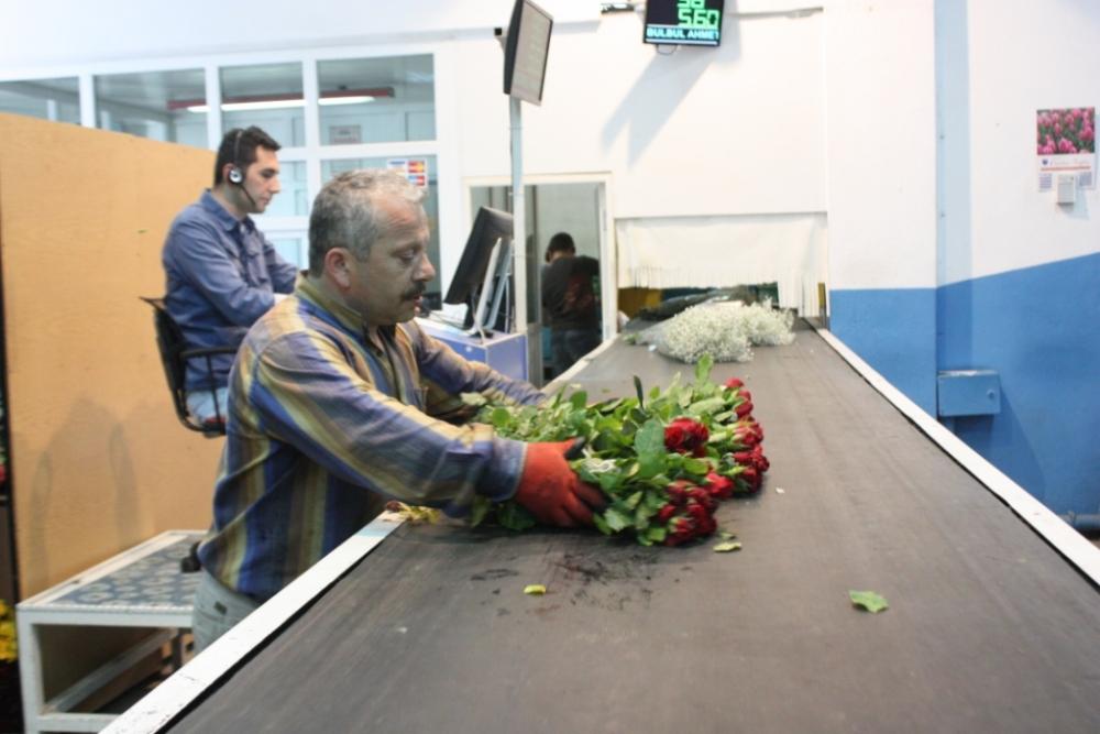 Çiçekçilerin Umudu 14 Şubat galerisi resim 15