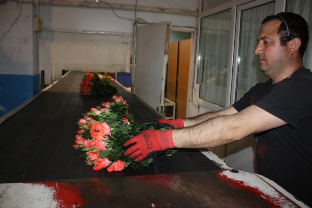 Çiçekçilerin Umudu 14 Şubat galerisi resim 16