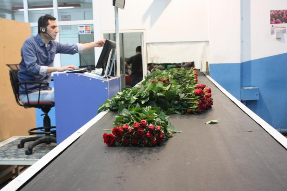 Çiçekçilerin Umudu 14 Şubat galerisi resim 17