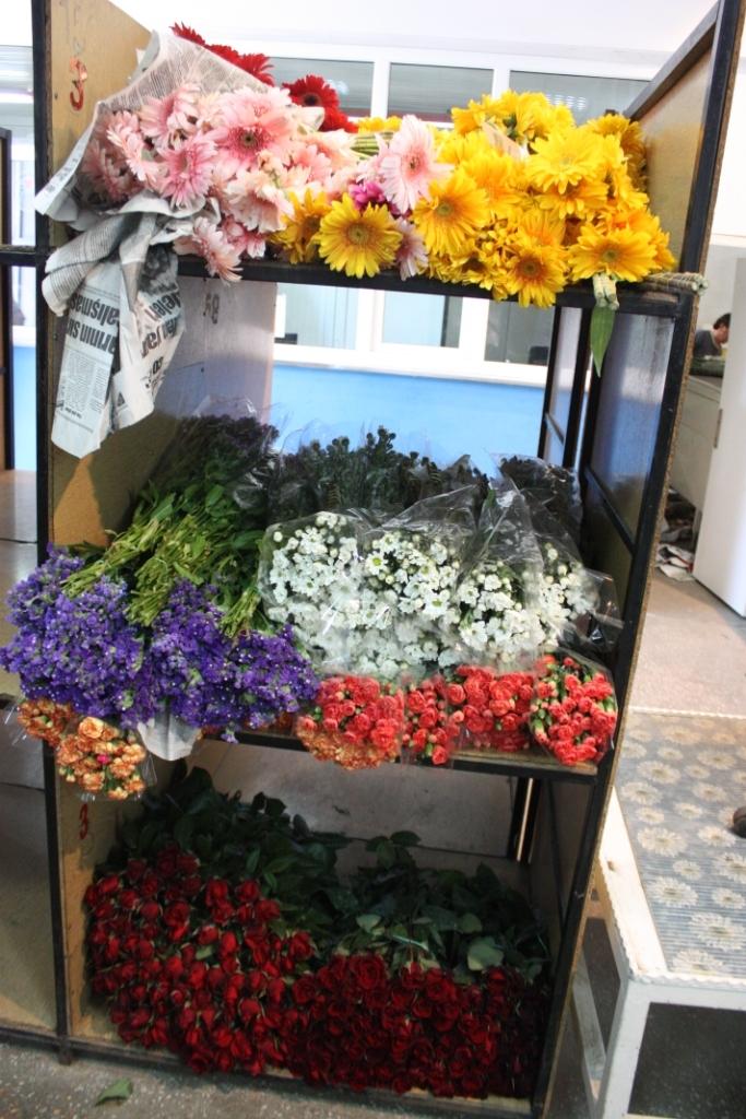 Çiçekçilerin Umudu 14 Şubat galerisi resim 22