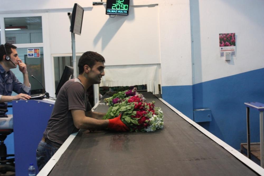 Çiçekçilerin Umudu 14 Şubat galerisi resim 6