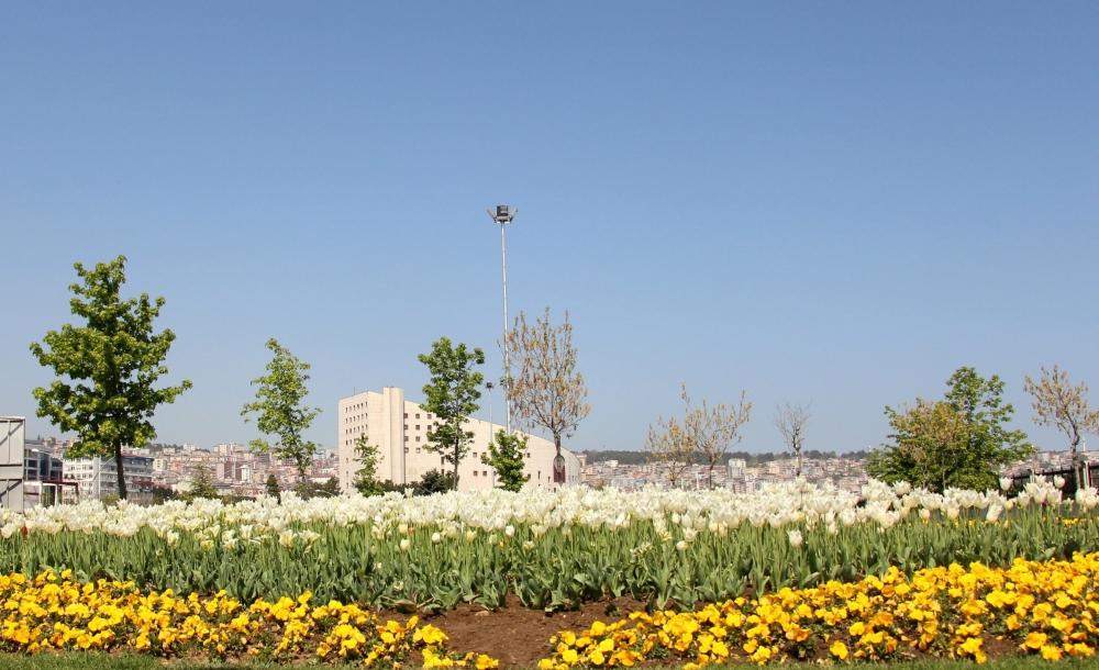 Samsun'da Bahar Yüzünü Gösterdi galerisi resim 1
