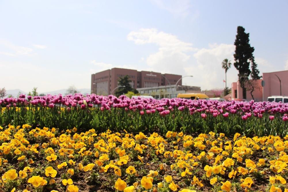 Samsun'da Bahar Yüzünü Gösterdi galerisi resim 4