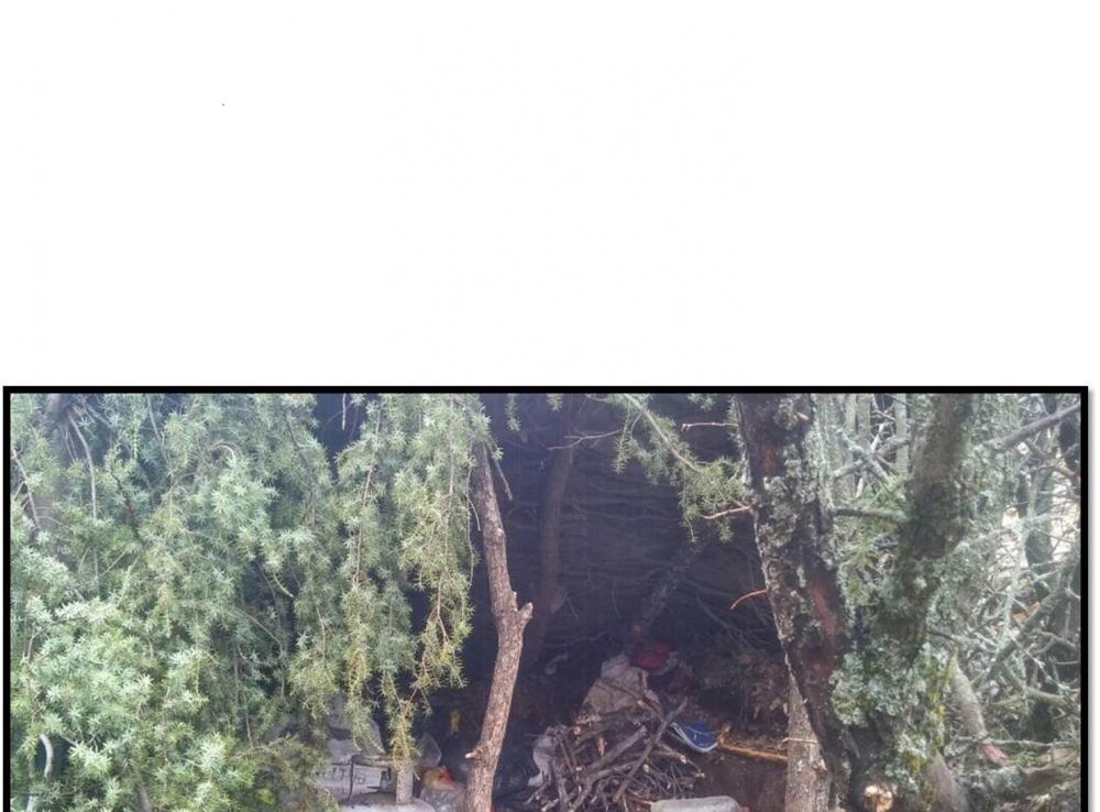 Güneydoğu'da Operasyonlar Sürüyor PKK'lılar Kaçıyor galerisi resim 26