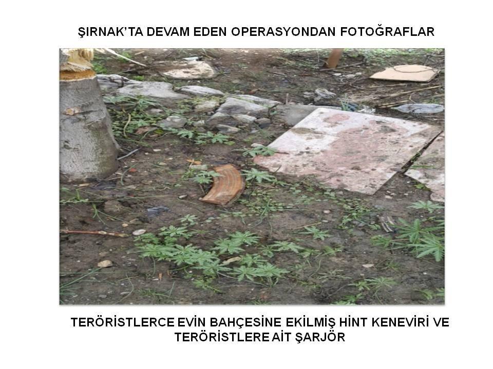Güneydoğu'da Operasyonlar Sürüyor PKK'lılar Kaçıyor galerisi resim 39