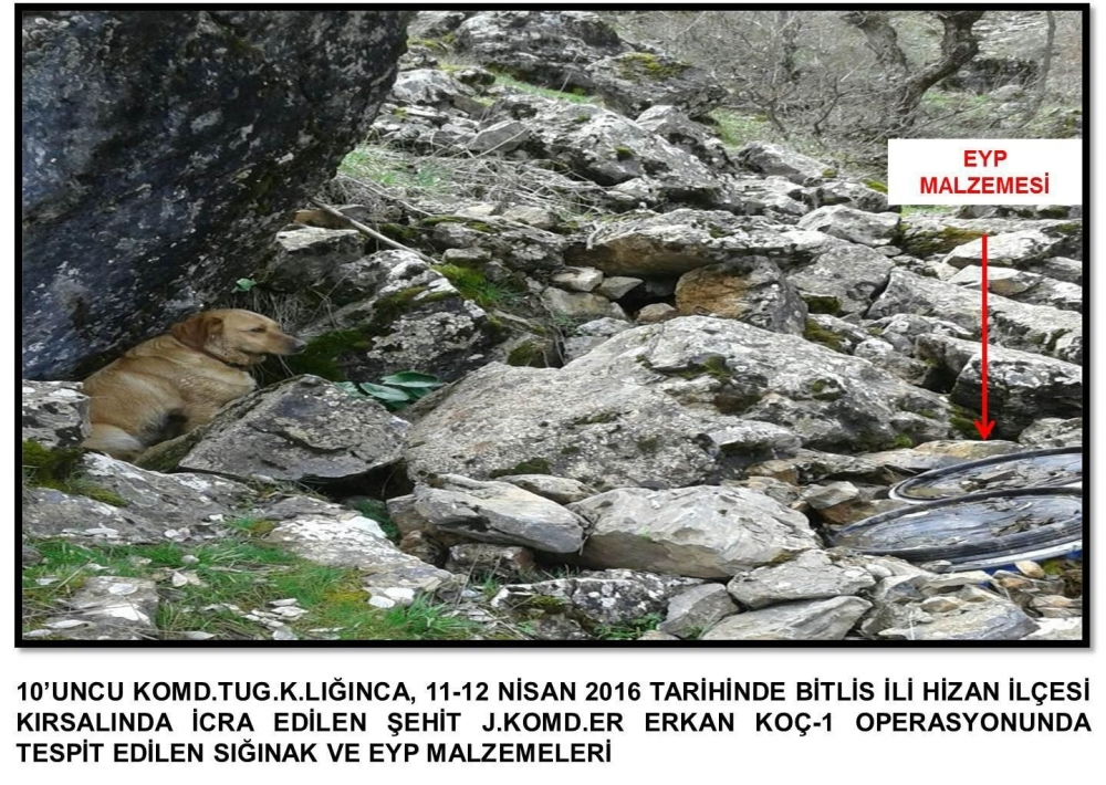 Güneydoğu'da Operasyonlar Sürüyor PKK'lılar Kaçıyor galerisi resim 40