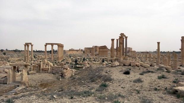 Mayınlı Güzellik: Palmira galerisi resim 1
