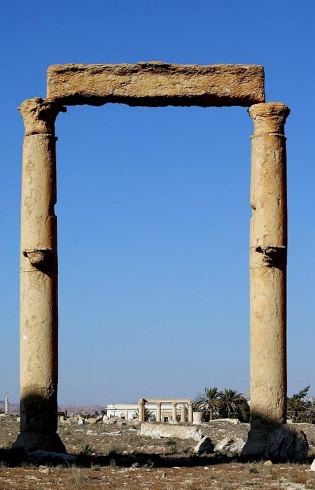 Mayınlı Güzellik: Palmira galerisi resim 7