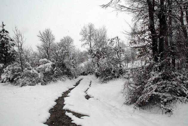 Samsundan kar manzaraları galerisi resim 2
