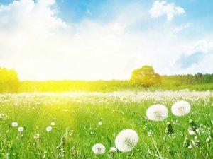 1 Mayıs'ta Samsun'da Hava Nasıl Olacak?