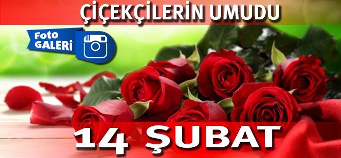Samsun'da Çiçekçilerin Umudu 14 Şubat