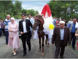 Gelin-damat Baba Evine At Sırtında Geldi