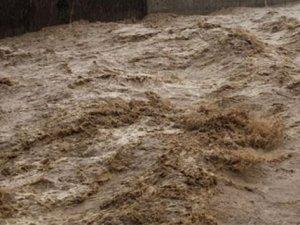 ABD'de Sel Felaketi: En Az 23 Ölü