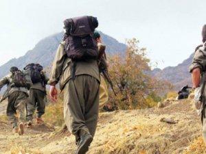 Tunceli'de PKK'lılar Araç Yaktı