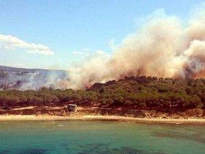 Çanakkaledeki Tarihi Yarımadada Yangın Kontrol Altına Alındı
