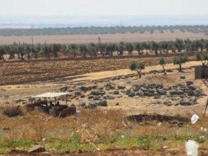Suriye Kuzeyinde 8 IŞİD'li Öldürüldü