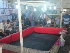 Manisa'da Horoz Dövüşüne Polis Baskını
