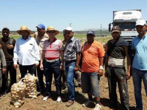Suriye'ye Patates Soğan İhracatı