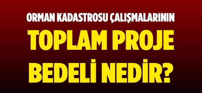 Samsun'da Orman Kadastrosu Çalışmalarının Toplam Proje Bedeli,3 Milyon 697 Bin 13 TL