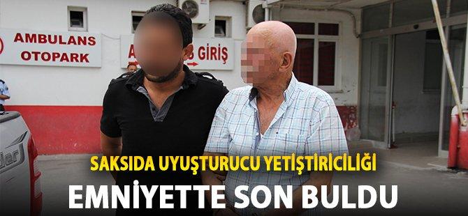 Samsun'da Evinin Balkonunda Hint Keneviri Yetiştiren Şahıs Gözaltında