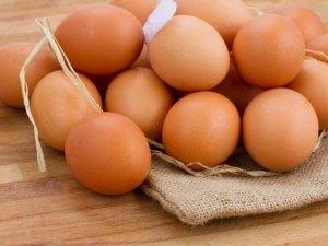 Uluslararası İlişkiler Düzeldi Yumurta İhracatı Arttı