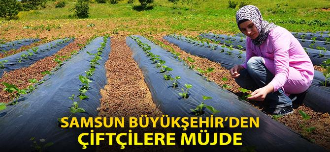 Samsun Büyükşehirden Çiftçilere Müjde