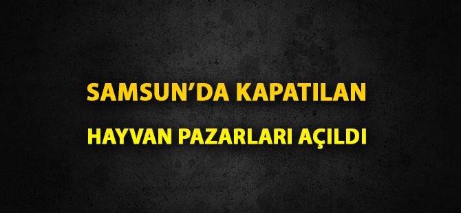 Samsun'da Şap Hastalığı Kontrol Altına Alınınca Hayvan Pazarları Açıldı